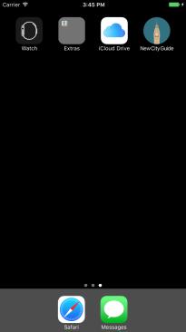 Primary Icon (Default)